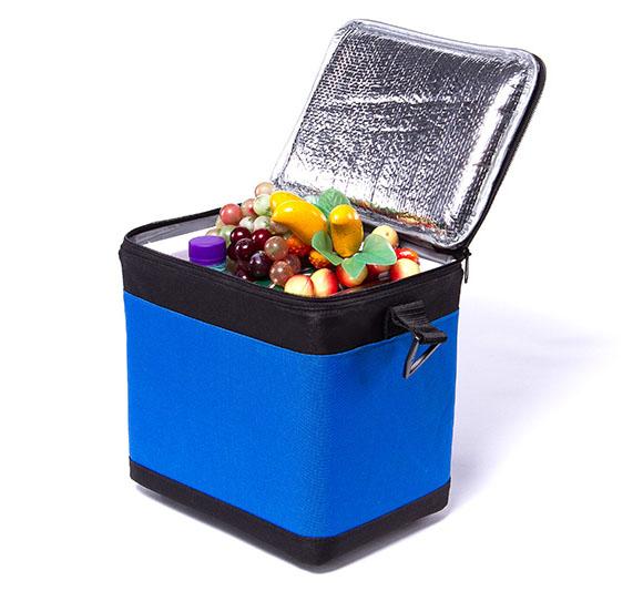 BW-6L 休闲保温箱、垂纶冰箱